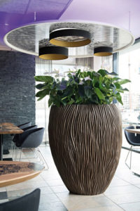 Gruen und Raum Pflanzgefaesse river Vase mit Anthurie weiß