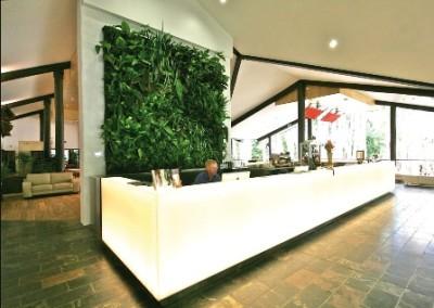 Raumteiler Wandpflanzen