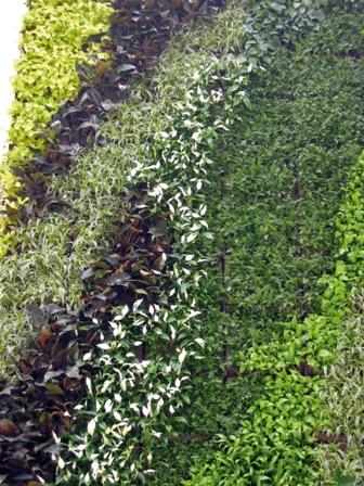 Vertical Green Gruen und Raum Wandbegruenung, Gruene Waende