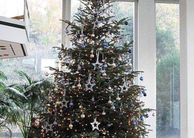 Weihnachtsservice-Gruen-und-Raum-bei-Allianz