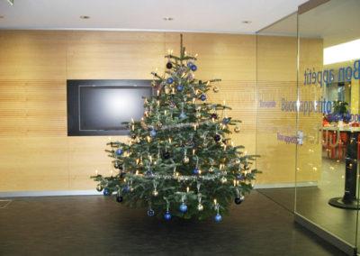 Weihnachtsservice-Gruen-und-Raum-bei-Allianz3