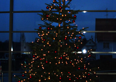 Weihnachtsservice-Gruen-und-Raum-bei-Heller