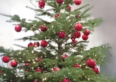 Weihnachtsservice-Gruen-und-Raum2