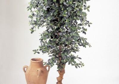 Gruen und Raum Kunst und Textilpflanzen