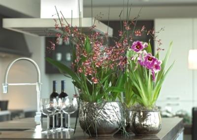 Luxury mit Orchidee und Oncidium Miltonia