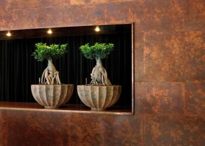Polystone rock bowl mit Ficus microcarpa Ginseng